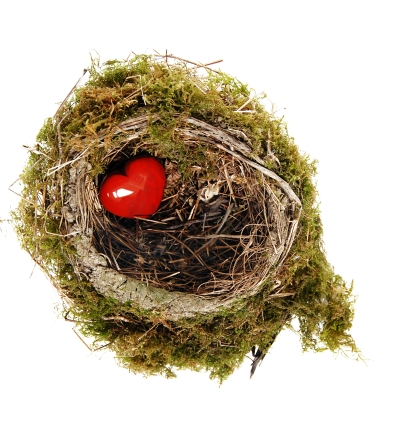 Red heart in nest